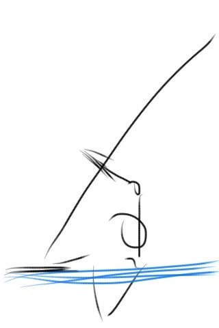 How to Windsurf – The Waterstart